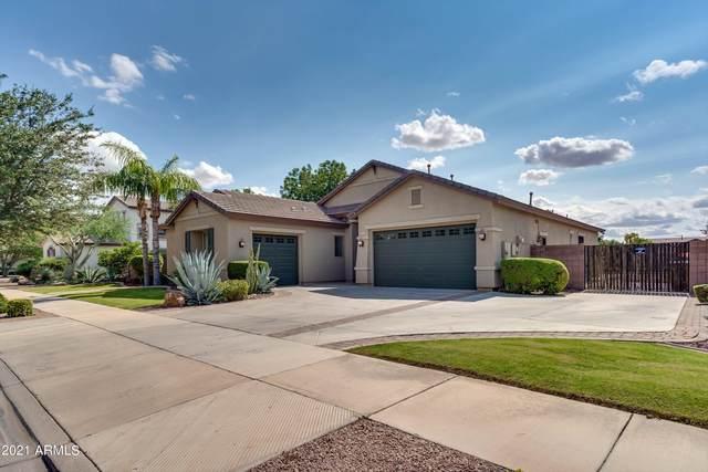 19129 E Mockingbird Drive, Queen Creek, AZ 85142 (MLS #6300830) :: Yost Realty Group at RE/MAX Casa Grande