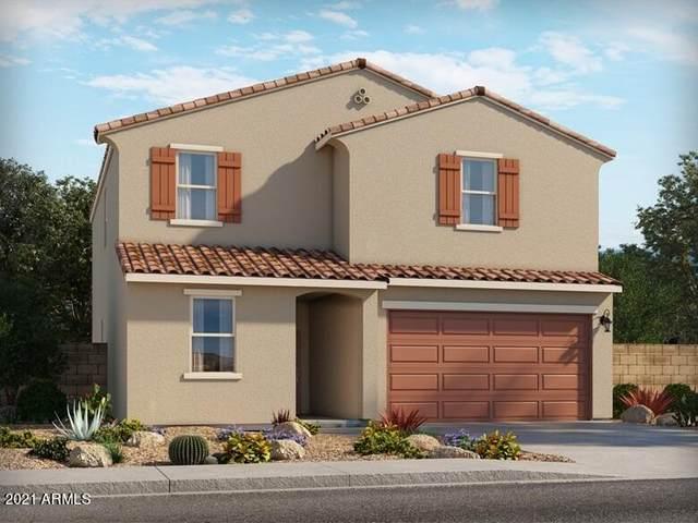 4523 E Italian Trotter Road, San Tan Valley, AZ 85140 (MLS #6300889) :: Elite Home Advisors