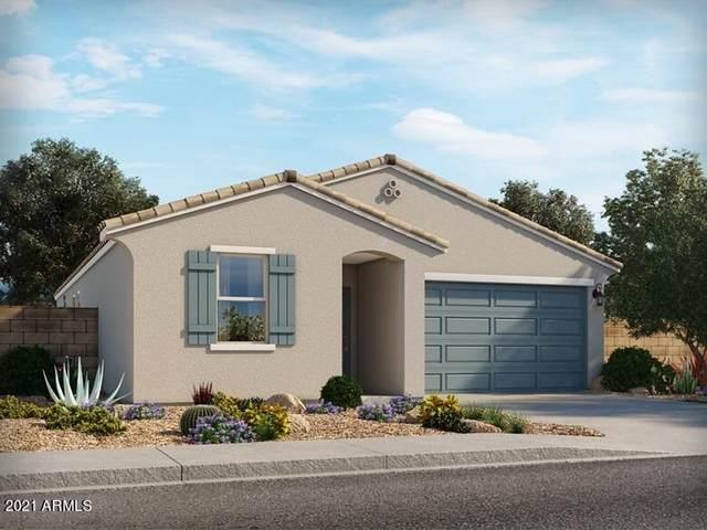 4469 E Italian Trotter Road, San Tan Valley, AZ 85140 (MLS #6300892) :: Elite Home Advisors