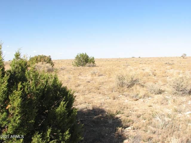 398 Yucca Place, Winslow, AZ 86047 (MLS #6300897) :: Klaus Team Real Estate Solutions