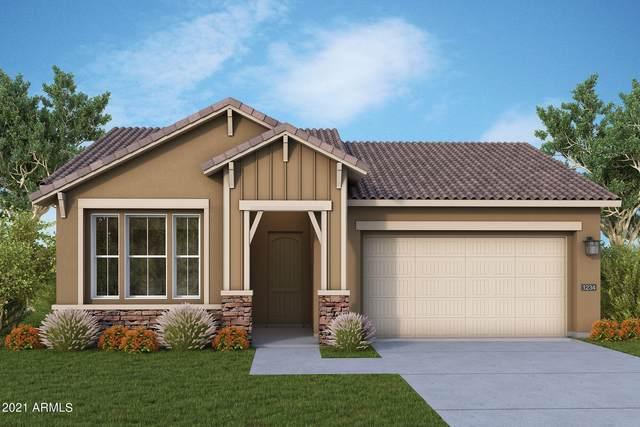 13223 W Golden Puma Trail, Peoria, AZ 85383 (MLS #6300901) :: Elite Home Advisors