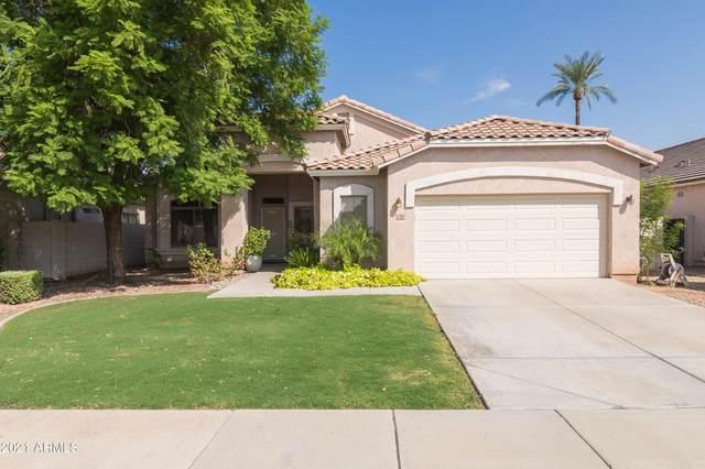 320 W Brooks Street, Gilbert, AZ 85233 (MLS #6300904) :: Klaus Team Real Estate Solutions