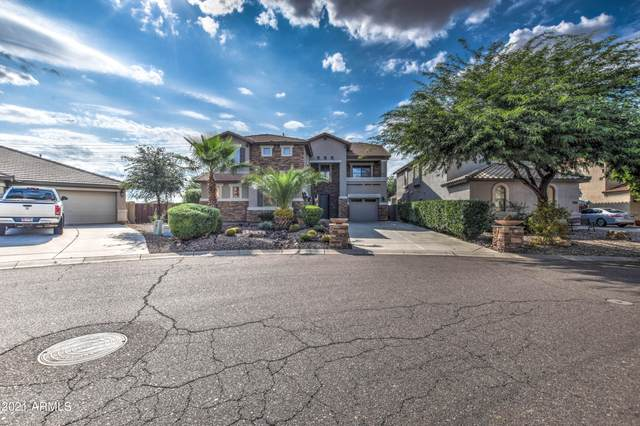 34542 N Murray Grey Drive, San Tan Valley, AZ 85143 (MLS #6300910) :: Dijkstra & Co.