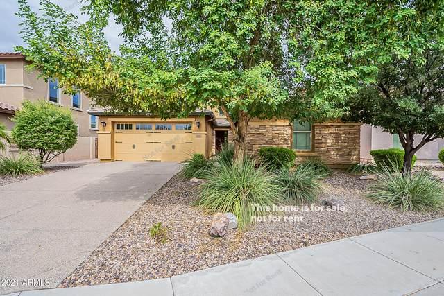 1618 W Swan Place, Chandler, AZ 85286 (MLS #6300926) :: Yost Realty Group at RE/MAX Casa Grande