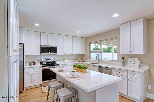 613 W Orchid Lane, Chandler, AZ 85225 (MLS #6300963) :: Elite Home Advisors