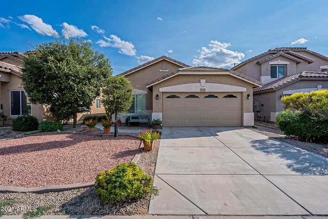 44305 W Mcclelland Drive, Maricopa, AZ 85138 (MLS #6300983) :: Elite Home Advisors