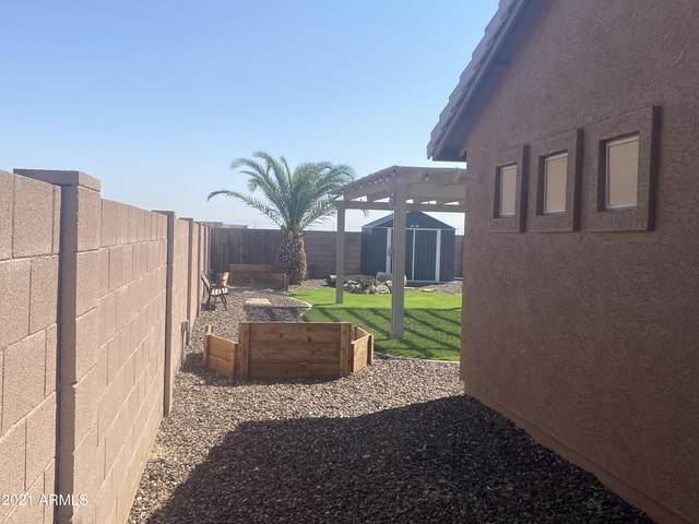 521 S 111TH Drive, Avondale, AZ 85323 (MLS #6301000) :: The Daniel Montez Real Estate Group