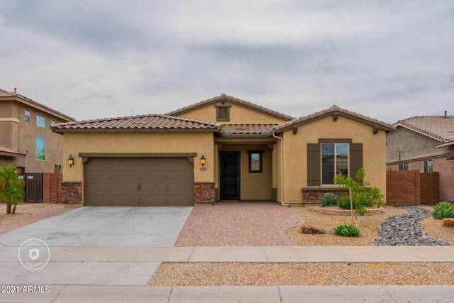 16067 W Cameron Drive, Surprise, AZ 85379 (MLS #6301009) :: Elite Home Advisors