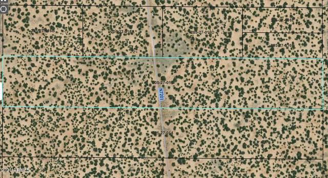 0 E 191 Highway E, St Johns, AZ 85936 (MLS #6301032) :: Yost Realty Group at RE/MAX Casa Grande