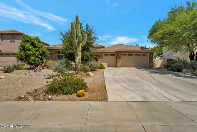 14130 W Woodbridge Avenue, Goodyear, AZ 85395 (MLS #6301033) :: Yost Realty Group at RE/MAX Casa Grande