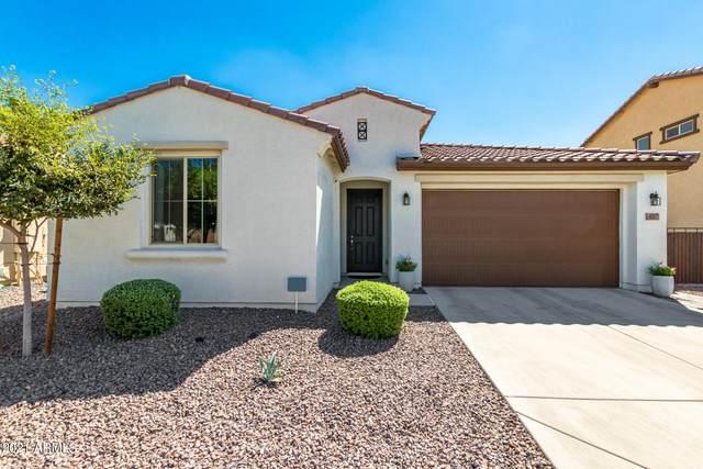 4217 W Coles Road, Laveen, AZ 85339 (MLS #6301084) :: Klaus Team Real Estate Solutions