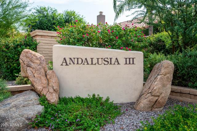 9250 N 106TH Place, Scottsdale, AZ 85258 (MLS #6301096) :: The Property Partners at eXp Realty