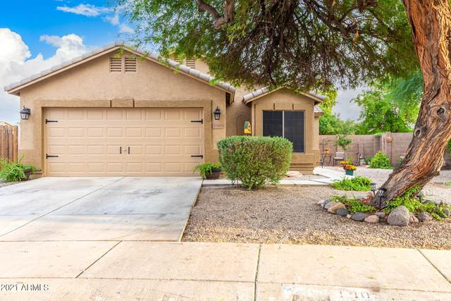 11405 W Windsor Avenue, Avondale, AZ 85392 (MLS #6301163) :: RE/MAX Desert Showcase
