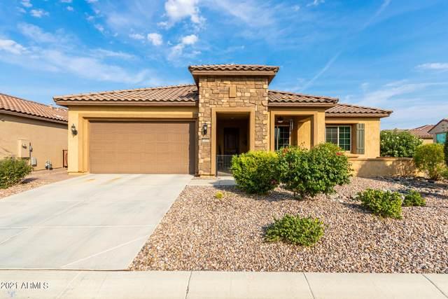 5664 W Willow Way, Florence, AZ 85132 (MLS #6301208) :: Elite Home Advisors