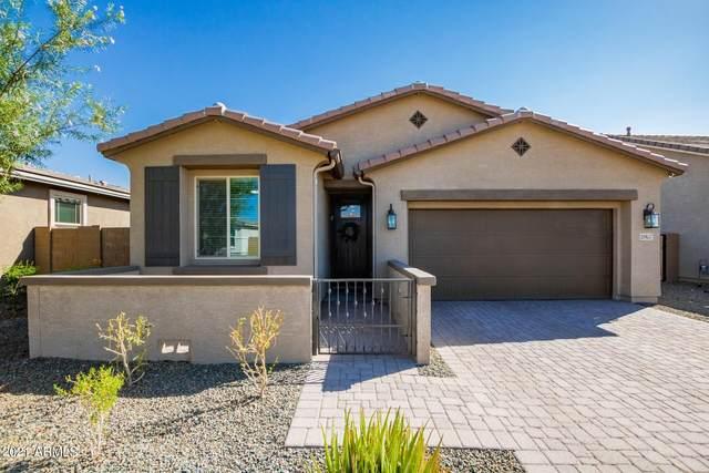 20857 E Seagull Drive, Queen Creek, AZ 85142 (MLS #6301248) :: Yost Realty Group at RE/MAX Casa Grande