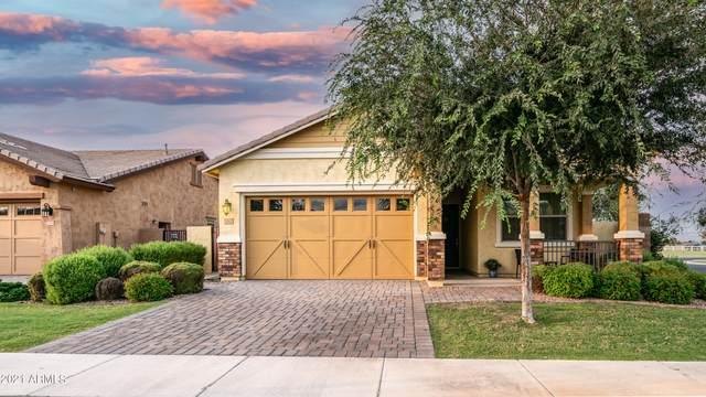 3162 E Pinto Drive, Gilbert, AZ 85296 (MLS #6301265) :: Elite Home Advisors