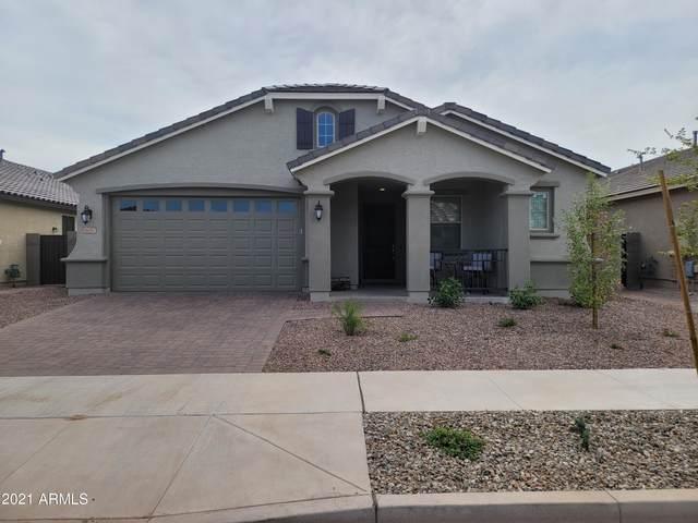 16087 W Creedance Boulevard, Surprise, AZ 85387 (MLS #6301293) :: Elite Home Advisors