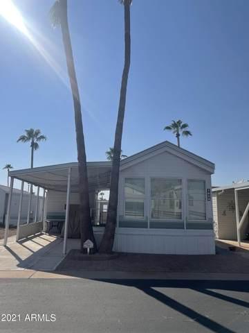 1054 S Seneca Drive, Apache Junction, AZ 85119 (MLS #6301312) :: Elite Home Advisors