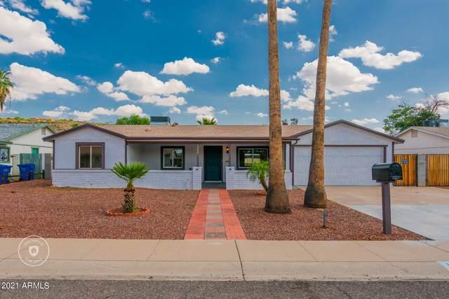 13601 N 18TH Drive, Phoenix, AZ 85029 (MLS #6301335) :: Elite Home Advisors