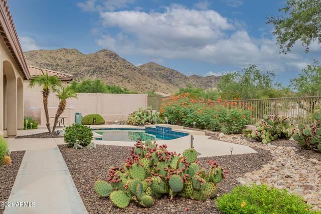 16405 S 28TH Avenue, Phoenix, AZ 85045 (MLS #6301348) :: The Daniel Montez Real Estate Group