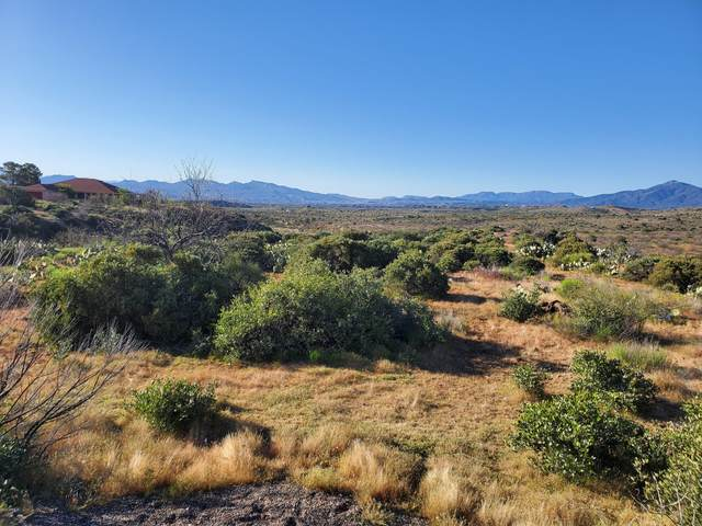 Lot 3 S San Carlos Drive, Globe, AZ 85501 (MLS #6301374) :: Klaus Team Real Estate Solutions