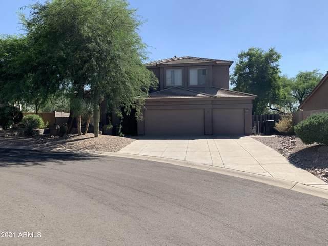 7635 E Sandia Circle, Mesa, AZ 85207 (MLS #6301415) :: TIBBS Realty