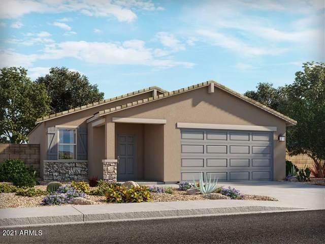 4477 W Greenleaf Drive, San Tan Valley, AZ 85142 (MLS #6301420) :: Klaus Team Real Estate Solutions