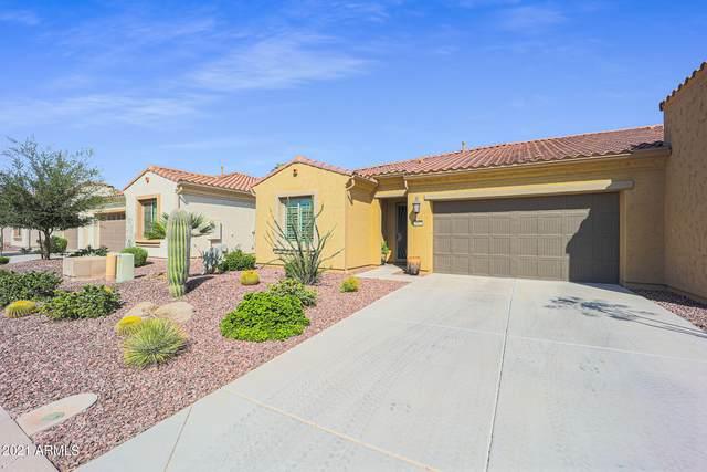 4007 N 163RD Drive, Goodyear, AZ 85395 (MLS #6301455) :: Yost Realty Group at RE/MAX Casa Grande