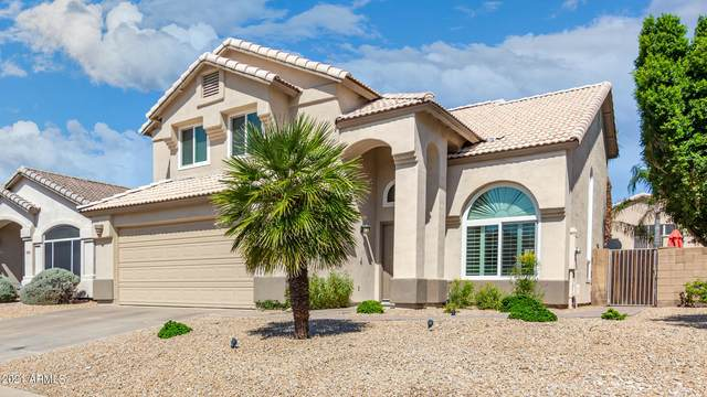 9294 E Pine Valley Road, Scottsdale, AZ 85260 (MLS #6301479) :: The Everest Team at eXp Realty