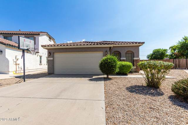 39605 N Zampino Street, San Tan Valley, AZ 85140 (MLS #6301484) :: Elite Home Advisors