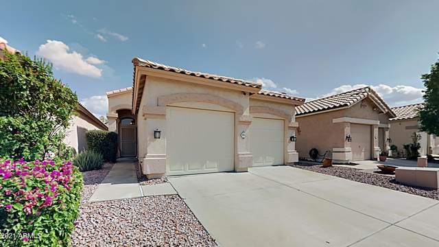 19811 N 49TH Avenue, Glendale, AZ 85308 (MLS #6301588) :: Elite Home Advisors