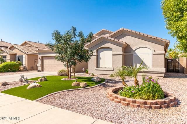16026 N 164TH Lane, Surprise, AZ 85388 (MLS #6301625) :: Klaus Team Real Estate Solutions