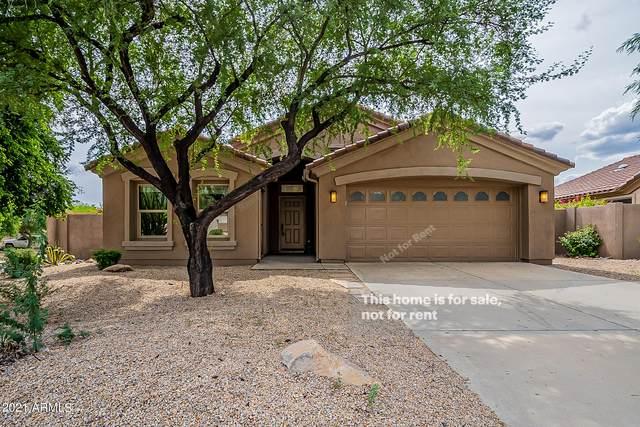 10225 E Betony Drive, Scottsdale, AZ 85255 (MLS #6301629) :: Elite Home Advisors