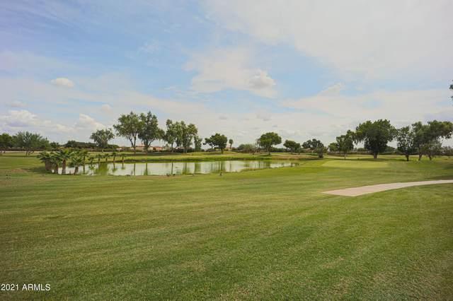 11201 N El Mirage Road A-53, El Mirage, AZ 85335 (MLS #6301632) :: Yost Realty Group at RE/MAX Casa Grande