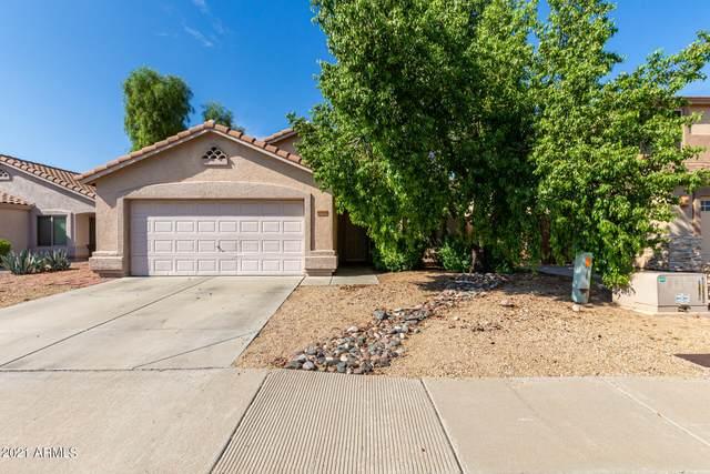 6966 W Kings Avenue, Peoria, AZ 85382 (MLS #6301692) :: Yost Realty Group at RE/MAX Casa Grande