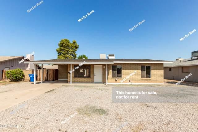 1320 E Verlea Drive, Tempe, AZ 85282 (MLS #6301718) :: Elite Home Advisors