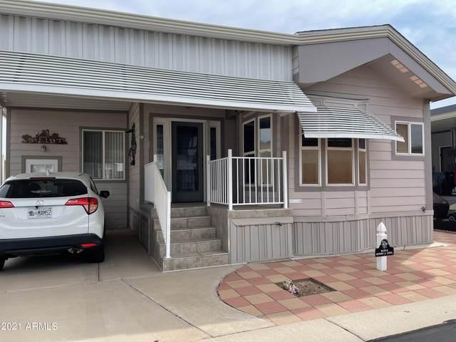 7750 E Broadway Road #181, Mesa, AZ 85208 (MLS #6301785) :: Elite Home Advisors