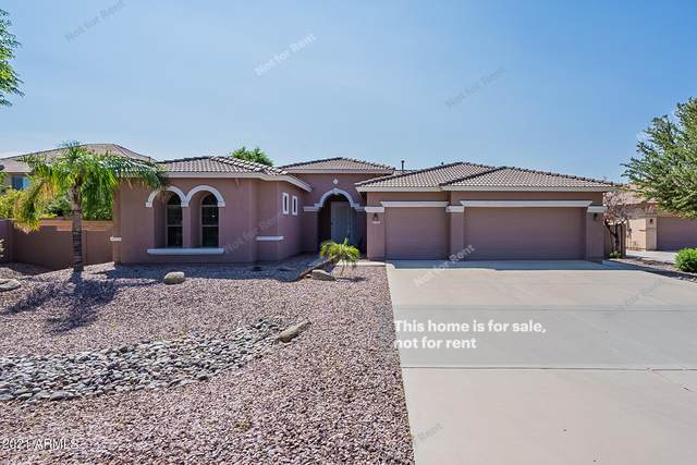 2951 E Beechnut Place, Chandler, AZ 85249 (MLS #6301798) :: Klaus Team Real Estate Solutions