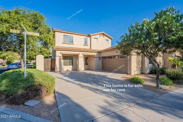 3957 W Roundabout Circle, Chandler, AZ 85226 (MLS #6301801) :: Elite Home Advisors