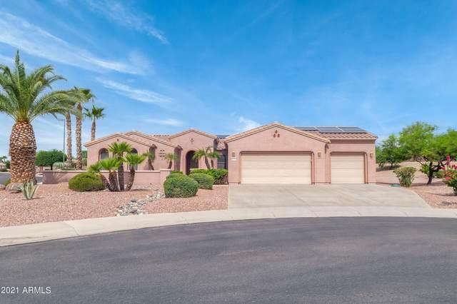 20055 N Organ Pipe Drive, Surprise, AZ 85374 (MLS #6301920) :: Elite Home Advisors