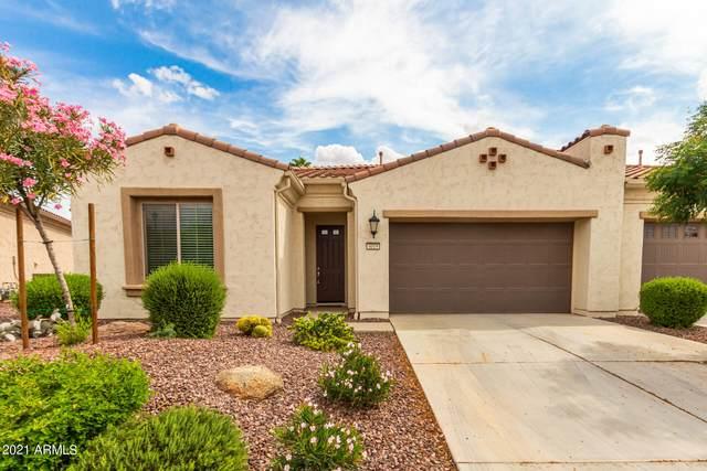 4019 N 163RD Drive, Goodyear, AZ 85395 (MLS #6301977) :: Yost Realty Group at RE/MAX Casa Grande
