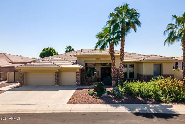 13113 W Peck Court, Litchfield Park, AZ 85340 (MLS #6301996) :: Elite Home Advisors