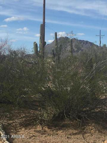 4820 S Fred Avenue, Tucson, AZ 85735 (MLS #6302067) :: The Copa Team | The Maricopa Real Estate Company