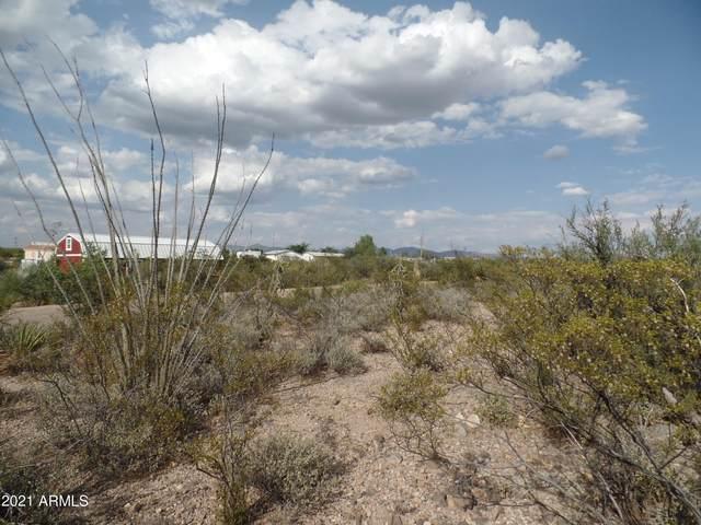 Lot 209 Cortez Drive, Tombstone, AZ 85638 (MLS #6302070) :: Fred Delgado Real Estate Group