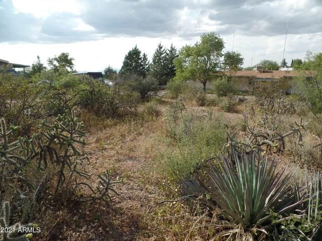 Lot 205 Cortez Drive, Tombstone, AZ 85638 (MLS #6302101) :: Fred Delgado Real Estate Group