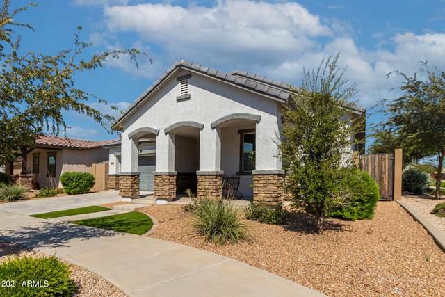 22496 E Via Del Oro, Queen Creek, AZ 85142 (MLS #6302107) :: Yost Realty Group at RE/MAX Casa Grande