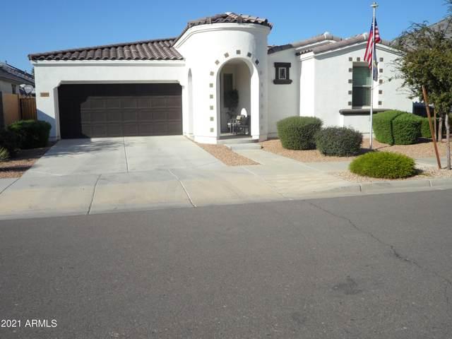 22464 E Via Del Oro, Queen Creek, AZ 85142 (MLS #6302110) :: Yost Realty Group at RE/MAX Casa Grande