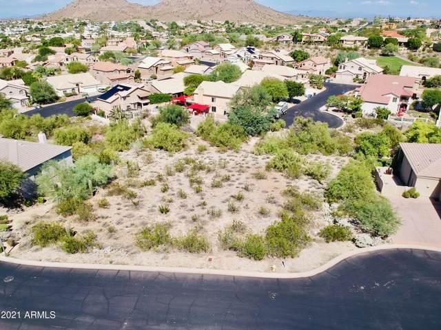 1334 E Victor Hugo Avenue, Phoenix, AZ 85022 (MLS #6302154) :: Elite Home Advisors