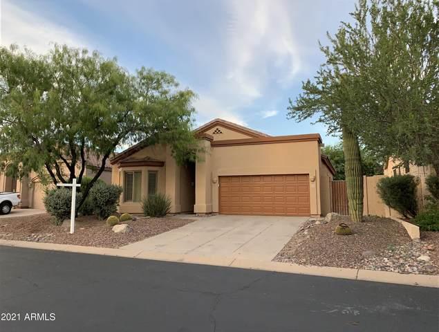 3055 N Red Mountain Road #174, Mesa, AZ 85207 (MLS #6302157) :: Elite Home Advisors