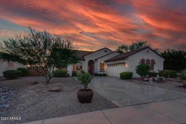 6972 S Roger Way, Chandler, AZ 85249 (MLS #6302163) :: Elite Home Advisors